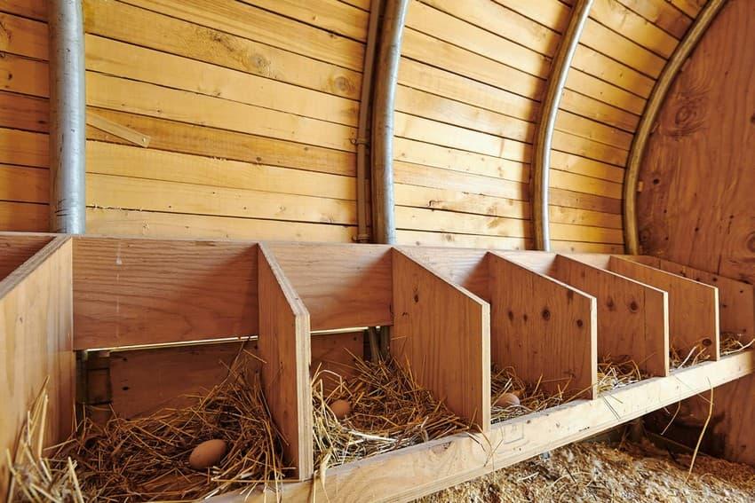 Гнезда для кур несушек своими руками- из чего и как- Необходимые материалы и способы изготовления куриных гнезд, для несушек - Секреты садоводов