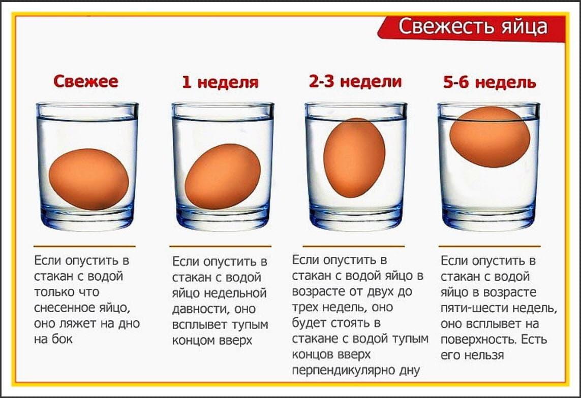 Проверка свежести яйца в воде