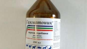 Гамматоник