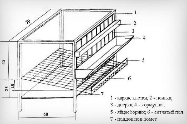 Чертеж металлической клетки для несушек