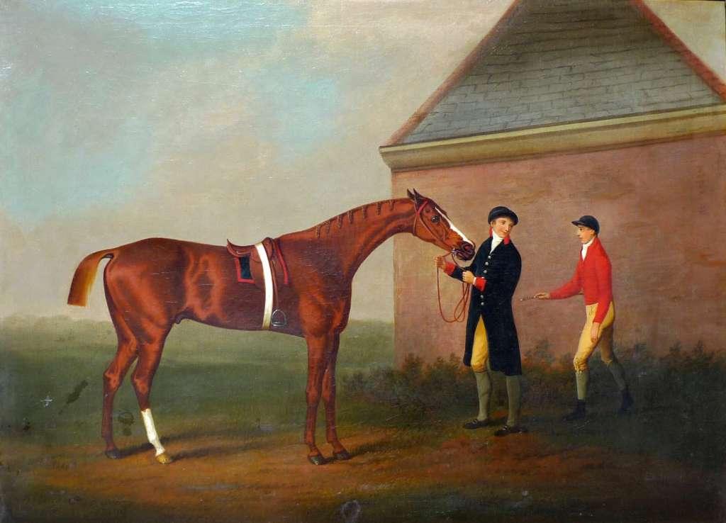 Как подобрать кличку для лошади?
