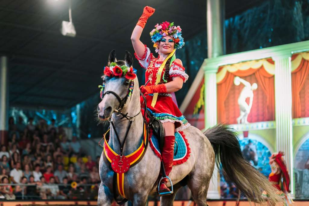 Лошадь для шоу