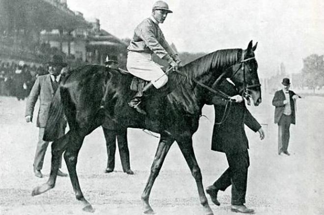 Максимальная скорость лошадей