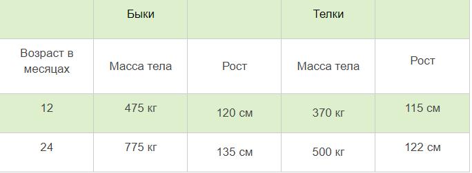 Таблица физической характеристики бельгийских коров