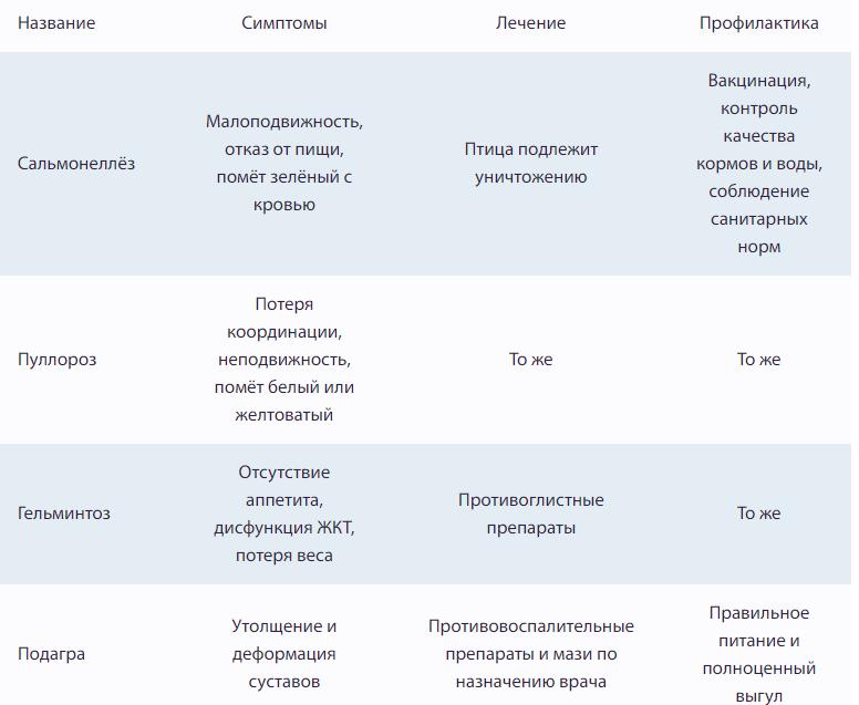 Таблица болезней цесарок